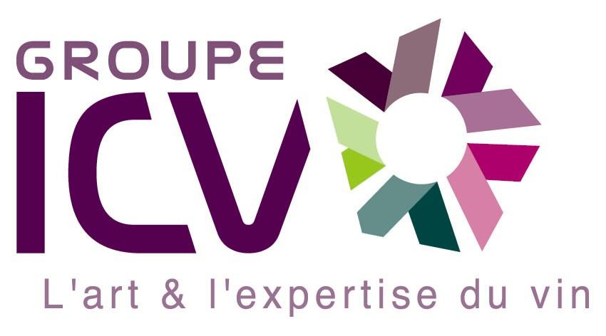 ICV logo quadri fond blanc